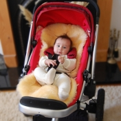 Pure Merino Sheepskin for Carseat and Buggy / Pushchair