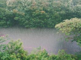 rain on river